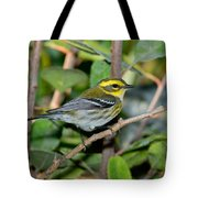 Townsends Warbler In Tree Tote Bag