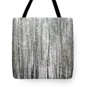 C And O Towpath Blizzard Tote Bag