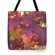 Traces Of Fall Tote Bag