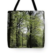Track Trough The Woods Tote Bag