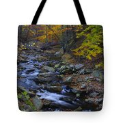 Tracking Color - Big Hunting Creek Catoctin Mountain Park Maryland Autumn Afternoon Tote Bag
