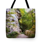 Trail Beside The Cliff Wildcat Den State Park Tote Bag