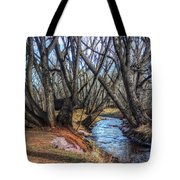 Trail By Fountain Creek Winter Tote Bag