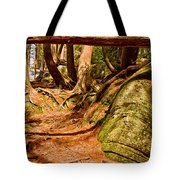 Trail In A Forest, Muskoka, Ontario Tote Bag