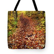 Trail In Fall Forest Tote Bag