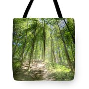 Trail In The Forest Tote Bag