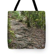 Trail Of Roots Tote Bag