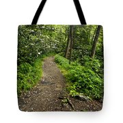 Trail To Chimney Tops - D005669a Tote Bag