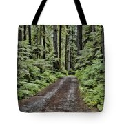 Trail To Jaw Bone Flats Tote Bag