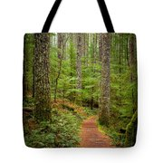 trail to Lower Lewis Falls Tote Bag