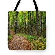 Trail To Miners Falls Tote Bag