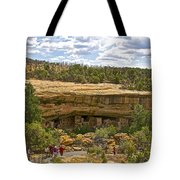 Trail View Of Spruce Tree House On Chapin Mesa In Mesa Verde National Park-colorado Tote Bag