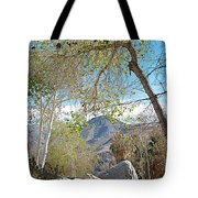 Trailhead Area In Andreas Canyon In Indian Canyons-ca Tote Bag