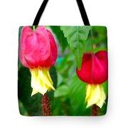 Trailing Abutilon Or Lantern  Flower Tote Bag