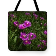 Trailing Ice Plant Tote Bag