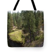 Trails In Spokane Tote Bag