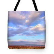 Train Passing Through A Desert, New Tote Bag