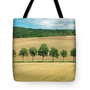 Train With A View Tote Bag