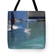 Trainer And Duo Of Dolphins At The Underwater World In Sentosa Tote Bag