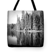 Tranquil Reflection In B And W Tote Bag