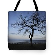 Tranquil Tote Bag by Terry DeLuco
