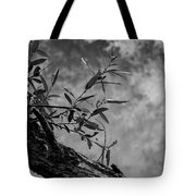 Tranquility  Bw  Tote Bag