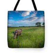 Tranquility On The Plains Tote Bag