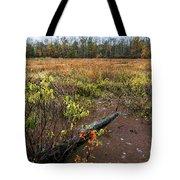 Transcending To Autumn Tote Bag