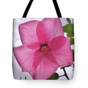 Translucent Flower After The Rain Tote Bag