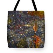 Trapped Leaf Tote Bag