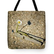 Trapped White Daisy Tote Bag