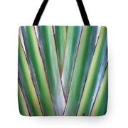 Travelers Palm 3 Tote Bag