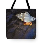 Traveling At A Snail's Pace Tote Bag