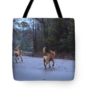 Traveling Twins Tote Bag
