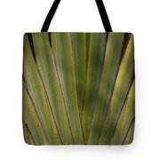 Traveller's Palm Patterns Dthb1542 Tote Bag