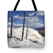Travertine Terrace And Dead Trees Tote Bag