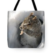 Treasure Found Tote Bag