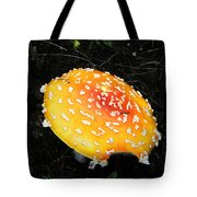 Treasures Of The Forest Two Tote Bag