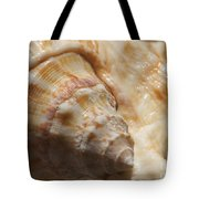 Treasures Of The Ocean 2 Tote Bag