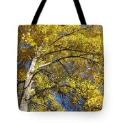 Tree 4 Tote Bag