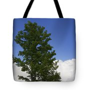 Tree Against A Cloudy Blue Sky In Vermont Tote Bag