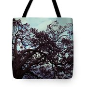 Tree Against Sky Tote Bag