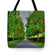 Tree Alley Tote Bag