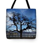 Tree And Borromee Islands Tote Bag