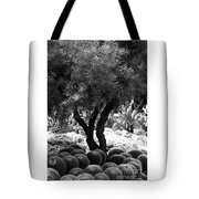 Tree And Cactus Tote Bag