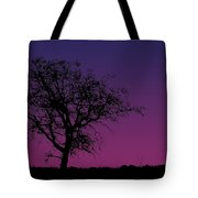 Tree And Coyote Tote Bag