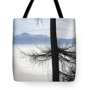 Tree And Fog Tote Bag