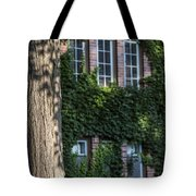 Tree And Ivy Windows Michigan State University Tote Bag