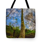 Tree And Rocks Tote Bag