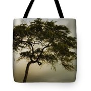 Tree And Stormy Sky Tote Bag